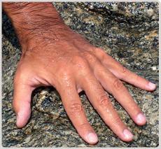 Delle belle mani