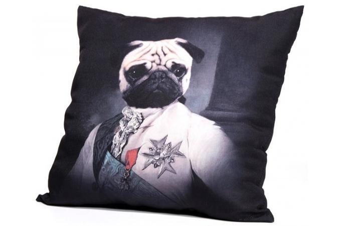 coussin pour chien pas cher. Black Bedroom Furniture Sets. Home Design Ideas