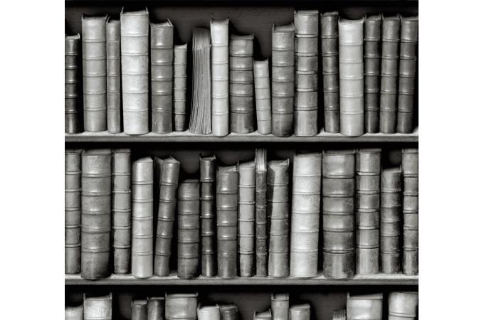 papier peint biblioth que grise deco design. Black Bedroom Furniture Sets. Home Design Ideas
