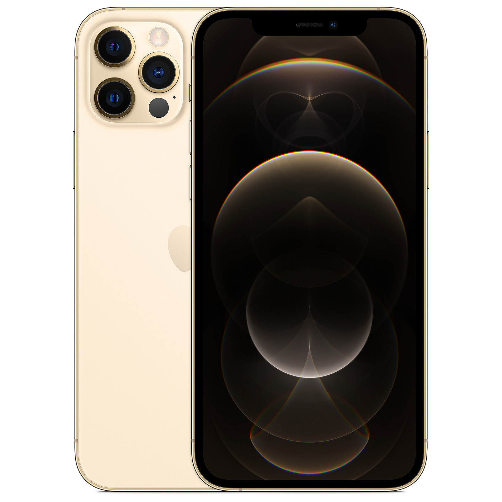 iPhone 12 Pro - 256 Go - Or