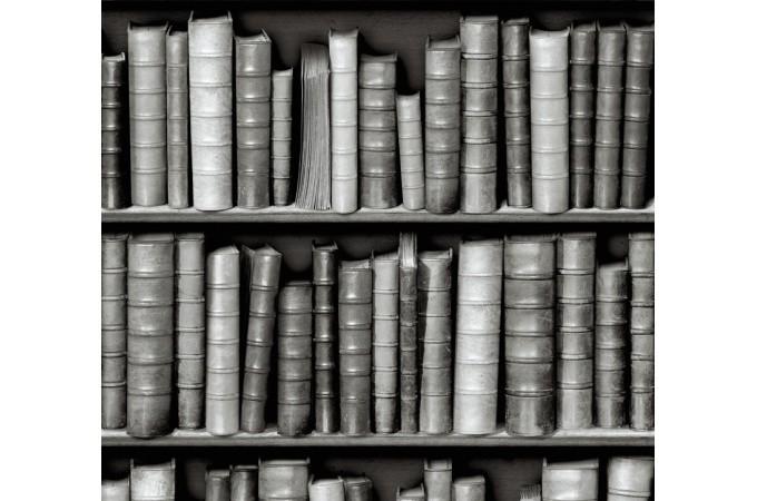 Papier peint biblioth que grise papier peint trompe l for Trompe l oeil bibliotheque papier peint