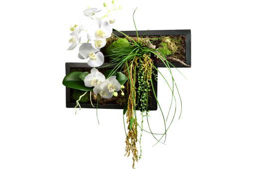 cadre vegetal plante artificielle phalaenopsis968 1627mp. Black Bedroom Furniture Sets. Home Design Ideas