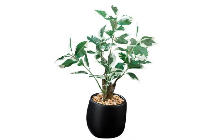 Plante artificielle ficus clair en pot h 29 cm plantes for Plantes artificielles pas cher