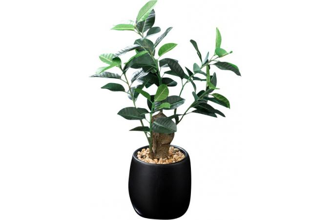 plante artificielle ficus fonc en pot h 29 cm plantes. Black Bedroom Furniture Sets. Home Design Ideas