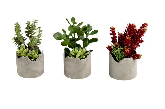 set de 3 plantes artificielles succulentes en pot deco design. Black Bedroom Furniture Sets. Home Design Ideas