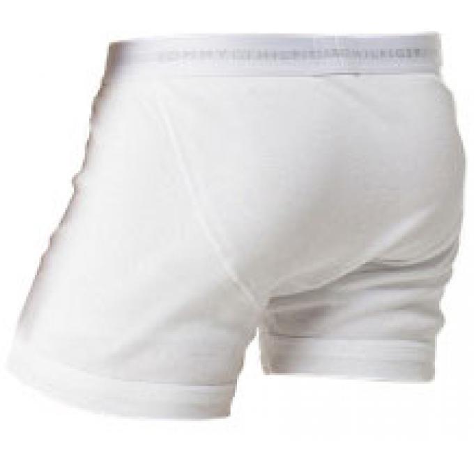 boxer avec ceinture logot e coton tommy hilfiger underwear sous v tements homme. Black Bedroom Furniture Sets. Home Design Ideas